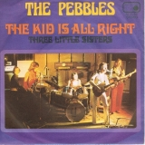 The Pebbles - The Kid Is All Right